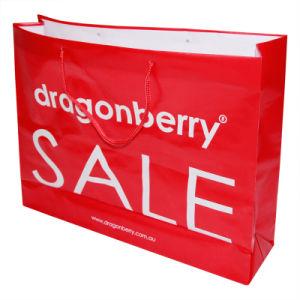 Shopping Bag (HF-629) pictures & photos