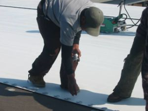 100% Virgin Material PVC Waterproofing Membrane for Roofing pictures & photos