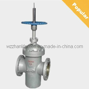 API Flat Gate Valve (With Diversion) Z43f pictures & photos