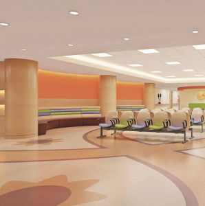 Hospital Wall Guards Interior Wall Protection pictures & photos