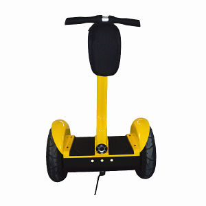 Balance Scooter 2000W with Free Maintenance pictures & photos