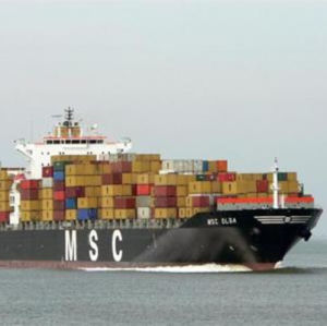 Msc Global Shipping Service to Europe pictures & photos