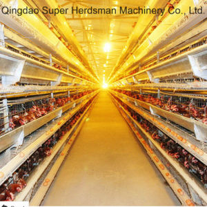 Poultry Equipment Chicken Cage Feeding System pictures & photos