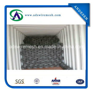 ASTM Standard Wire Backed Silt Fence pictures & photos