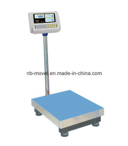 Counting Bench Scale pictures & photos