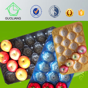 Made in China Best Price Metric PP Plastic Tray Fruit Liner in Kroger&Walmart Market pictures & photos