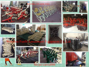 Hot Sale Body Building Equipment Air-Turner Outdoor Fitness Equipment FT-Of311 pictures & photos