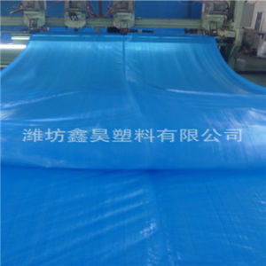Heavy Duty 200 GSM Blue Waterproof PE Tarpaulin pictures & photos