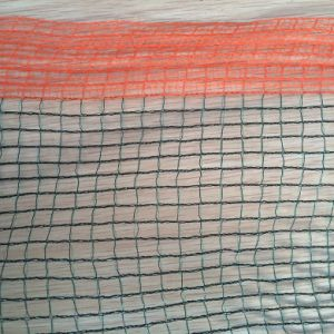 HDPE Construction Safety Nets, Anti-Hail Nets for Plants and Fruits pictures & photos