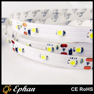Special Low Price Flexible LED Strip (EPSSP35-60-W)
