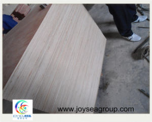 1220*2440mm Fancy Veneer Plywood/Poplar Plywood pictures & photos
