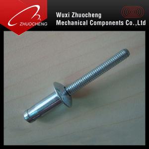 All Aluminium Hem-Firm Csk Head /Dome Head Rivet pictures & photos