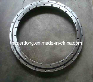 Slewing Ring Bearings (HED-S1008) pictures & photos