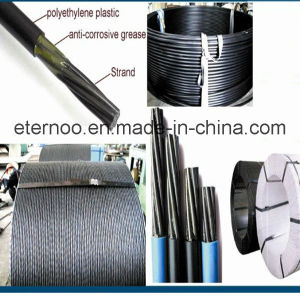 China Best Exporting Unbonded Prestressed Strand 12.7mm pictures & photos