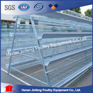 Battery Layer Poultry Cages (BDT037-JF-37) pictures & photos