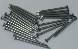 Common Nails Round Nail Iron Nail pictures & photos