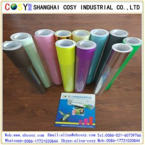 80 Micron Self Adhesive Color Cutting Vinyl with High Quality for Decoration pictures & photos