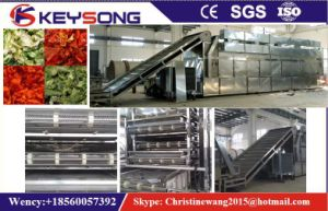 Apple Peach Apricot Fruit Vegetable Mesh Belt Conveyor Dryer pictures & photos
