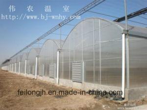 Multi-Span Arch PC Greenhouse Skeleton pictures & photos
