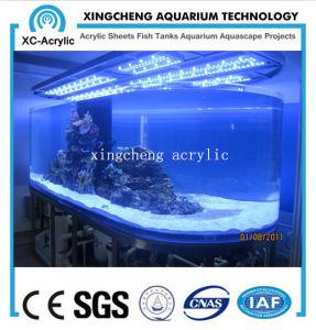 Indoor Marine Aquarium/Acrylic Aquarium pictures & photos