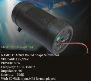 Subwoofer Car Audio (BS-4013A)