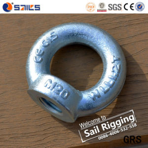 Galvanized Drop Forged DIN582 Lifting Eye Nut Eye Nut pictures & photos