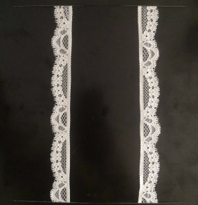 Nice Lace Trim for Lady Underwear pictures & photos