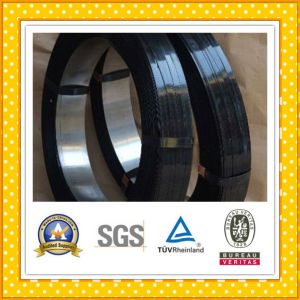 Cold Rolled Coil of Spring Steel pictures & photos
