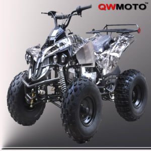 CE off Road ATV 125CC 110CC/ off Road Vehicle (QW-ATV-02E)