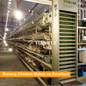 China Factory Direct Sell Price Cages For Laying Hens pictures & photos