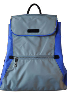 New Arrival Ladies′ Nylon and Leather Backpack Bs13510