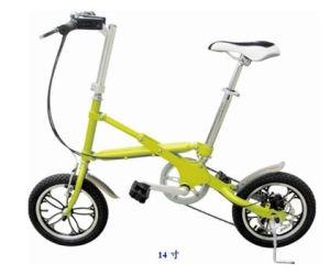 Folding Bike (FB03-14)