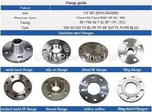 ASTM A105 Forging Dn500 Pn10 Steel Flanges pictures & photos