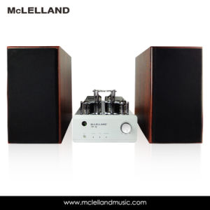 Vacuum Tube Power Amplifier with Bluetooth (TP-9) pictures & photos