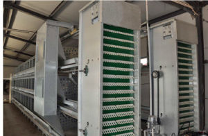 Great Design Automatic Chicken Poultry Cage Farm Equipment for Breeder /Breeding Chicken H Frame pictures & photos