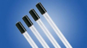UV Fluorescent Lamp