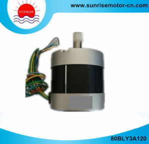 80bly3a120 310V 440W 1.4n. M 3000rpm Round Brushless DC Motor pictures & photos