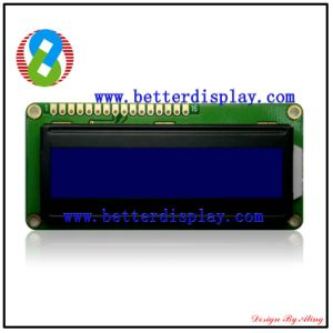 LCD Display Stn Blue LCM Standard Graphic Module pictures & photos