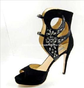 Fashion High Heel Back Close Ladies Shoes (HCY02-272)