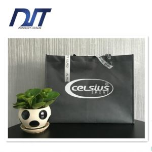 ISO/BSCI OEM Eco PP Non-Woven Reusable Shopping Bag