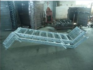 Galvanized Scaffolding Ladder pictures & photos