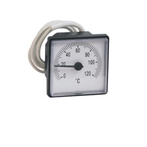 Square Plastic Case Capillary Temperature Gauge