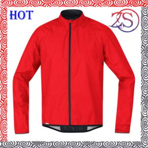Ozeason Customized Plain Jackets Red Jackets for School Team pictures & photos