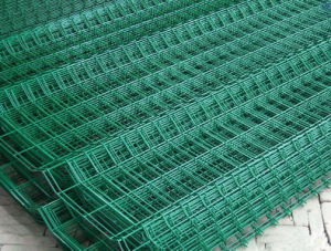 Hot Sales PVC Coated Wire Mesh/Wire Mesh Fencing pictures & photos