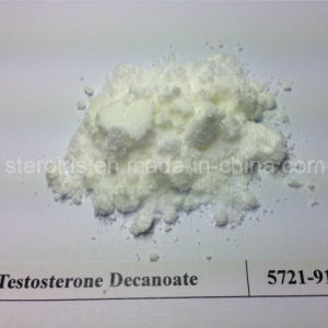 China Powde Testosterone Decanoate Steroid Hormone pictures & photos