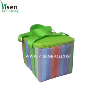 Promotional Cooler Bag, Beer Cooler Bag (YSCLB00-105) pictures & photos