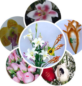 Multifunction DIY Digital Flower Printer (CE, FCC) /High Quality RGB Digital Fresh & Art Flower Printer pictures & photos
