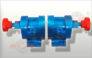 2cy1.08/2.5 Gear Oil Pump pictures & photos