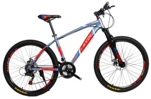 Cheap Bicicleta for Easy Rider on Sale pictures & photos