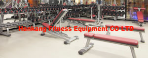 Body Building Machine, Gym Equipment, Body-Building Equipment-Dual Adjustable Pulley (PT-927) pictures & photos